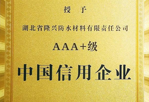 3A+级中国信用企业